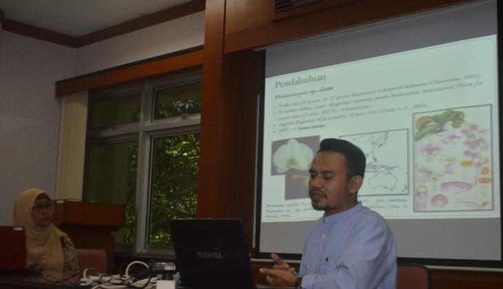 Anggrek Phalaenopsis Alam di Indonesia Terancam Punah