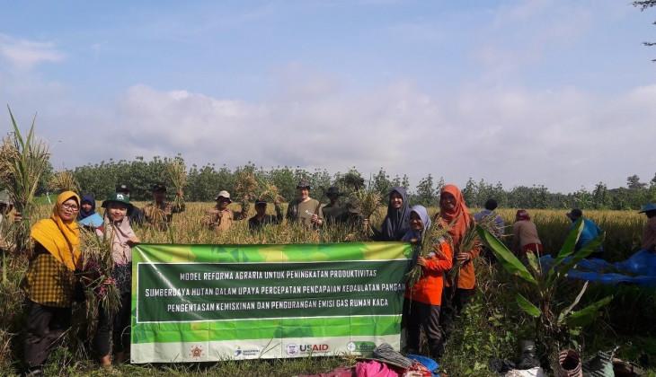 UGM Panen Perdana Padi Gogo di KHDT Ngandong-Getas