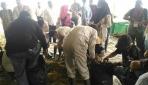 Pengabdian Masyarakat FAPET UGM di Penajam Paser Utara