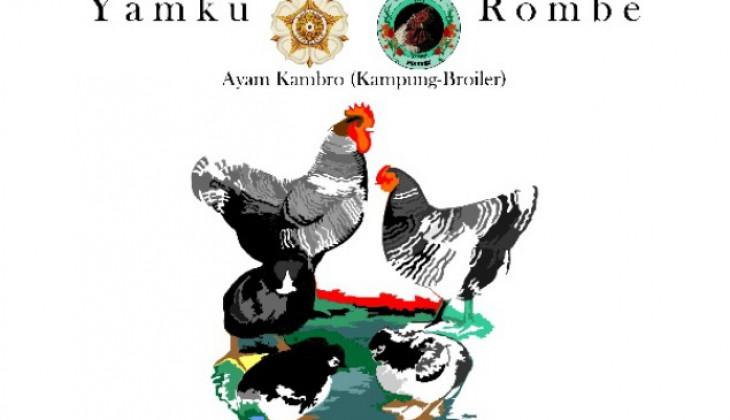 Mahasiswa UGM Kembangkan Bisnis Ayam Kambro