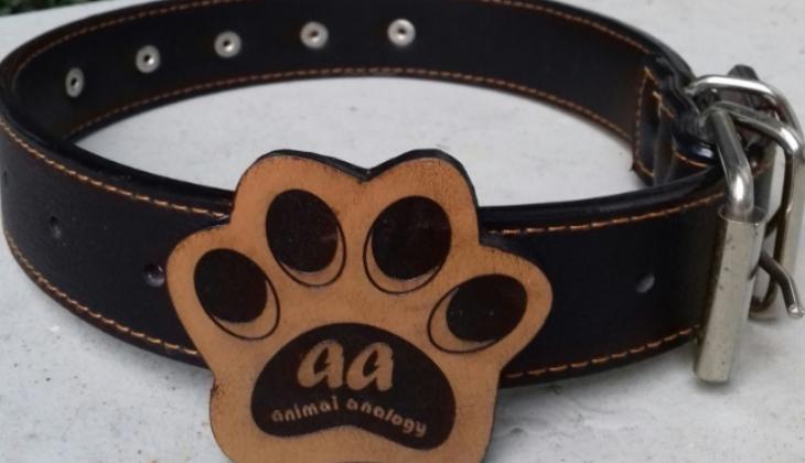 Animal Anology: Inovasi Pintar untuk Hewan Peliharaan