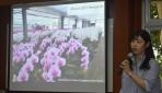 Mahasiswa Nagoya University Berkesempatan Mengaplikasikan Teknik Genome Editing Anggrek di UGM