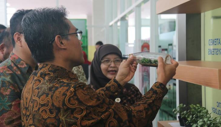 Biomart, Minimarket Milik Fakultas Biologi UGM Jual Bibit Anggrek