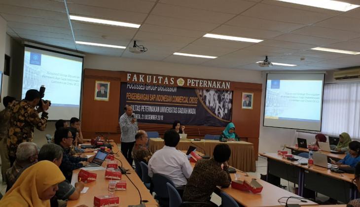 Sapi Komersial Asli Indonesia Perlu Dikembangkan