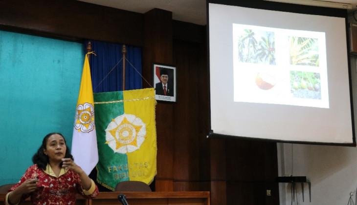 Penerapan Sasi Kelapa Turunkan Kualitas Hasil Panen Kelapa di Buru Selatan