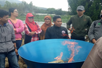 UGM Develops Bamboo for Biochar