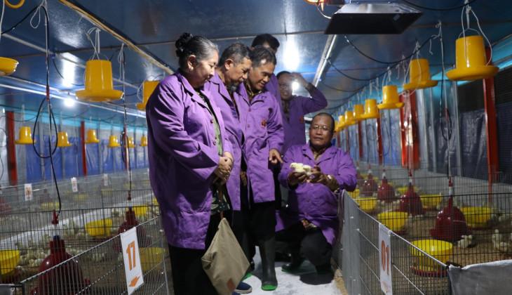 Fakultas Peternakan UGM-JAPFA Resmikan Research Farm
