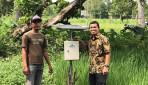 Tingkatkan Hasil Pertanian, UGM Terapkan Smart Farming dan Metode SRI di Sumba