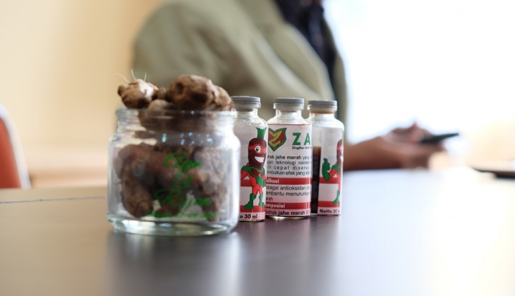 Ugm Students Use Red Ginger To Cure Chronic Kidney Disease Universitas Gadjah Mada