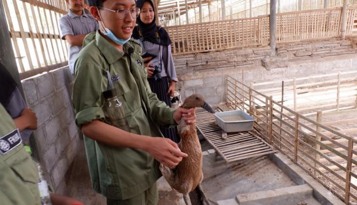 Mahasiswa Kedokteran Hewan UGM Gelar Poultry Day
