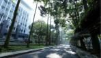 UGM Peringkat 3 Kampus Hijau Terbaik di Indonesia Versi UI GreenMetric