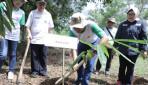 UGM Tanam Ribuan Bambu di Wanagama untuk Pelestarian Alam