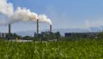 PSE UGM-PT SBI Kerja Sama Kurangi Emisi CO2 dengan Mikroalga