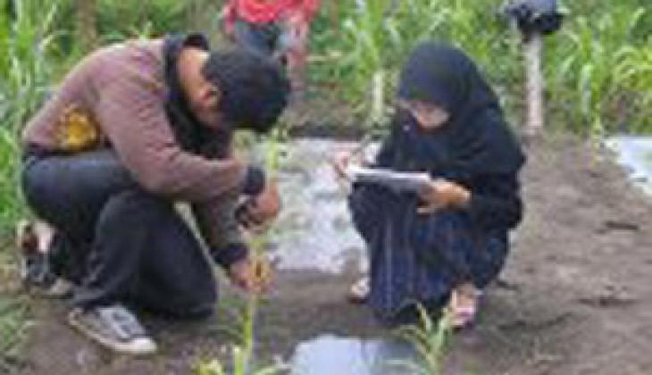 Dukung Metode PBR, Fakultas Peternakan Kembangkan Field Laboratory
