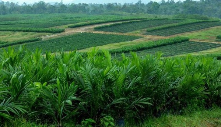 Mengukuhkan Kedaulatan Rakyat atas Sumber Daya Agraria