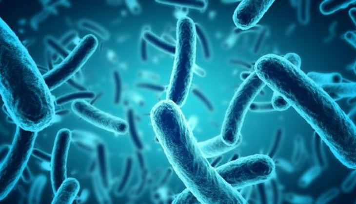 Pakar UGM Ingatkan Ancaman Penyakit Resistensi Antimikroba