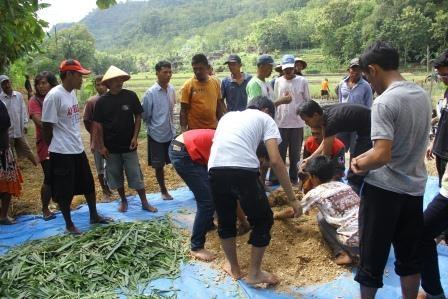 BEM Fakultas Peternakan Bangun Desa Mitra di Bantul