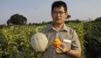 UGM Raih Ilmuwan Biologi Kontributif  MIPA UI Award 2013