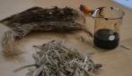 UGM Kembangkan Teknologi Konversi Limbah Biomassa Menjadi BBM
