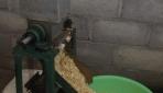 Mengoptimalkan Produksi Tempe dengan Mesin Pengupas Kedelai Jenis Screw