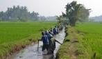 UGM Dorong Modernisasi Irigasi di Indonesia
