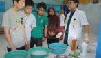 Mahasiswa Jepang dan Malaysia Belajar  Kesehatan Gigi di UGM