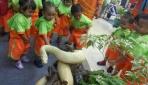 Siswa TPA Tungga Dewi UGM memperhatikan koleksi awetan hewan di stand FKH