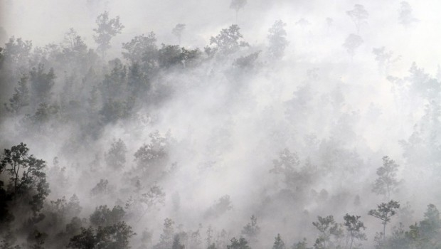Bencana Kebakaran Hutan dan Kabut Asap (foto:dok. beritasatu.com)