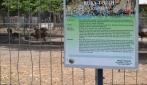 UGM Siap Jadi Pusat Budidaya Ternak Rusa di DIY