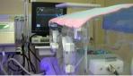 Bayi prematur dalam perawatan di inkubator. (foto:istimewa)