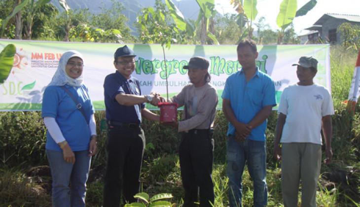 MM UGM Tanam 1.000 Pohon di Merapi
