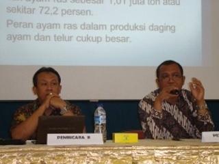 Bisnis Unggas di Indonesia Masih Perlu Didongkrak