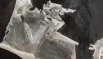 Plastik yang dihasilkan dari kitosan sisik ikan gurami yang dicampur dengan kitosan komersial. (foto: dok.pribadi)
