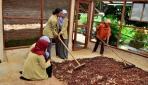 Mahasiswa UGM Olah Limbah Kakao Menjadi Nata De Cocoa