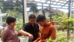 Mahasiswa UGM Berikan Pelatihan Sistem Pertanian Aquaponik di PT. Indmira