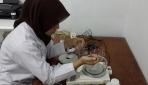 Inovasi Minyak Serai dan Minyak Jeruk Purut Jadi Obat Kumur
