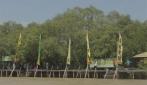 Mahasiswa UGM Dorong Kesadaran Warga Lestarikan Mangrove Wonorejo