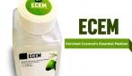 Enriched Coconut's Essential Medium, merupakan medium  alternatif penumbuh sel punca dari air kelapa buatan mahasiswa UGM.