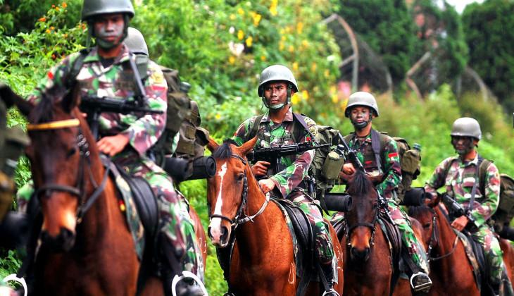 Mahasiwa UGM Teliti Kualitas Kuda Kavaleri Milik TNI