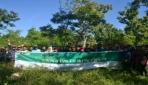 Mahasiswa KKN UGM Tanam 1.000 Pohon di Rinjani