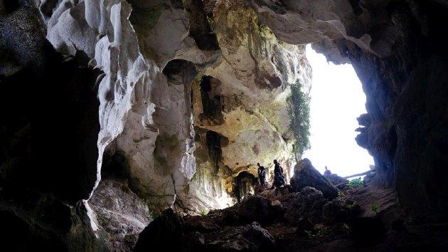 Ilustrasi (foto: Kompas.com)