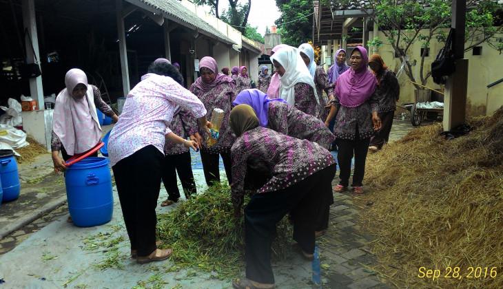 Fakultas Peternakan Memberi Pelatihan Pakan Ternak Kambing