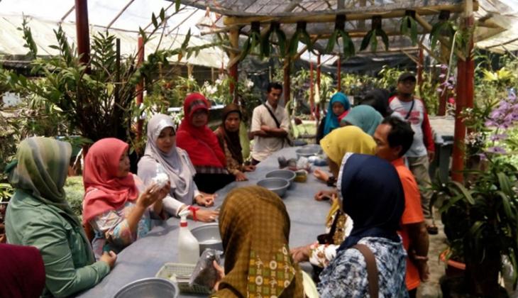 Indonesia Kaya Potensi Anggrek
