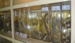 Awetan basah berbagai jenis ular yang dipamerkan di Museum Biologi UGM. Museum ini memiliki 4.000 koleksi awetan hewan dan tumbuhan di Indonesia.