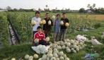 Membangkitkan Kembali Generasi Muda Cinta Pertanian