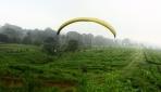 Mapagama Menghidupkan Kembali Paralayang di Kampus UGM