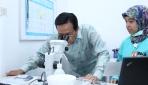 Gubernur DIY Dukung Riset Nyamuk Ber-wolbachia