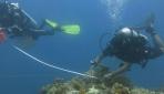Tim UGM Berhasil Menyingkap Kekayaan Bawah Laut Sangihe