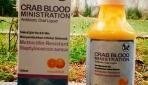 Darah Kepiting Bakau sebagai Antimikrobial Peptida terhadap MRSA