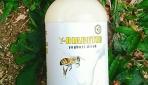 Mahasiswa UGM Manfaatkan Lebah Madu Hutan Untuk Obat Diabetes
